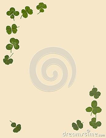 固定式4棵三叶草的叶子