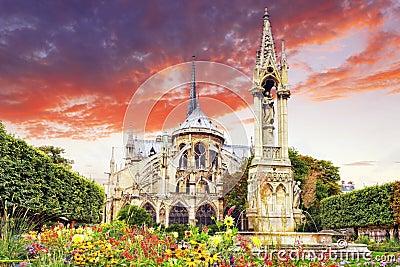 巴黎圣母院大教堂,有花的庭院.巴黎.法国.