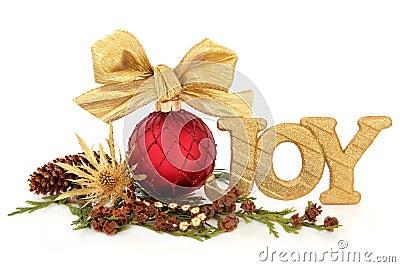 圣诞节喜悦