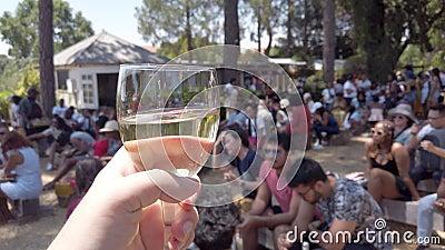 在南非约翰内斯堡的Fourways Farmers Market,手拿一杯白葡萄酒与人们社交 股票录像