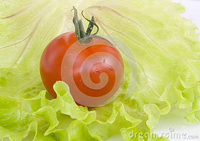 在圆白菜叶子的红色蕃茄