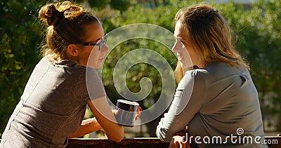在家互动互相的女同性恋的夫妇在阳台4k上 股票录像