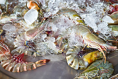 在市场上的新鲜的虾