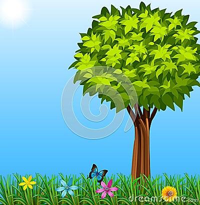 一棵树的囹�a_一棵树的例证在庭院的.