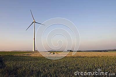 在日落的风车