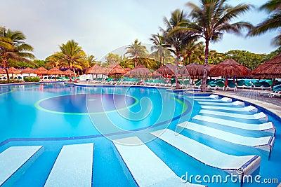 在早晨的热带游泳池