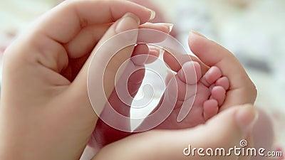 在母亲现有量的婴孩英尺 在女性心形的手特写镜头的微小的新出生的婴孩` s脚 子项她的妈妈 愉快 股票录像