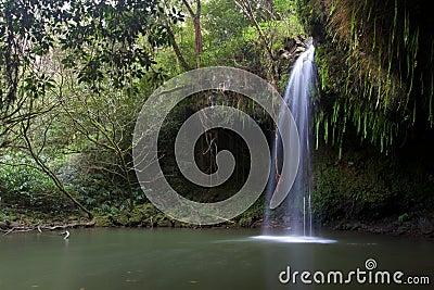 在毛伊夏威夷的北边Twinfalls