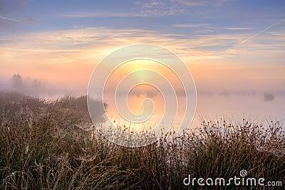 在沼泽的巨大有薄雾的日落