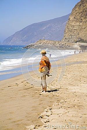 在海滩的报废