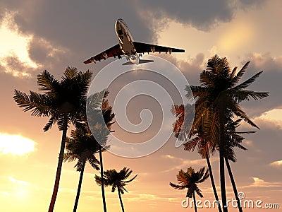 在热带天空的飞机
