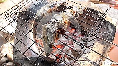 在热的火的烤鱼 股票录像