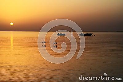 在红海日出