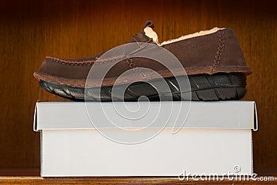 在配件箱的布朗鞋子