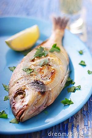 地中海的鱼