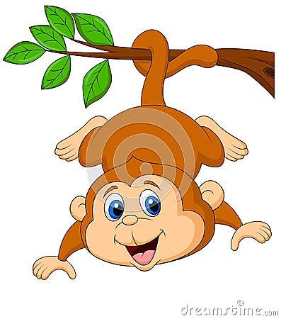 垂悬在树枝的逗人喜爱的猴子动画片图片