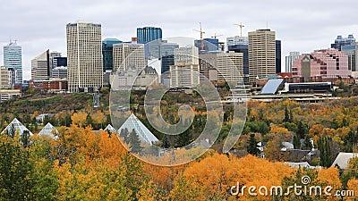 埃德蒙顿,加拿大在秋天, timelapse 4K的市中心 股票录像
