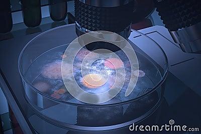 培养皿细菌