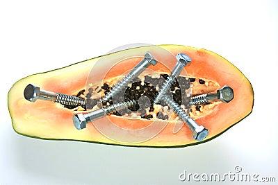 基因上被修改的番木瓜
