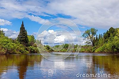 与河和森林的夏天风景.图片