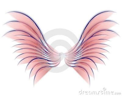 天使鸟神仙的桃红色翼