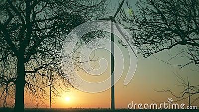 太阳落山时,野外巨型风力涡轮机,替代能源 股票视频