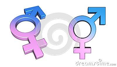男性女性做爱片_女性男性符号白色 免版税图库摄影 - 图片: 6390887