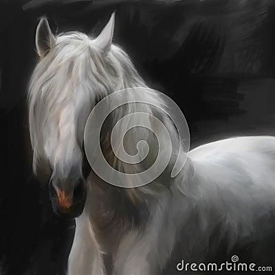 安达卢西亚马图片_安达卢西亚的马