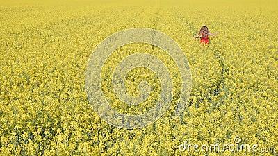 小女孩跑过油菜田,慢动作 股票视频