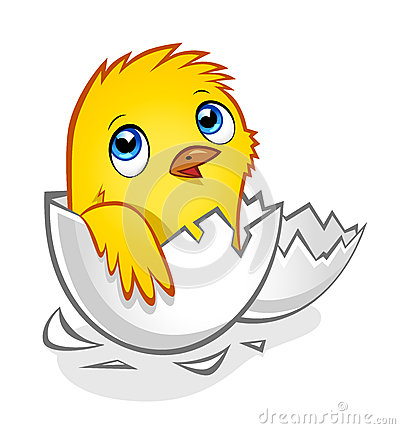 黄色片色鸡鸡_在残破的蛋壳的动画片黄色新出生的鸡.