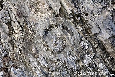岩石的片段