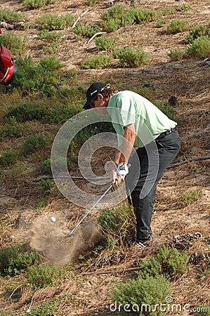 布赖恩・迪维斯英语高尔夫球 编辑类库存照片