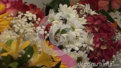带花和花的冰箱 影视素材