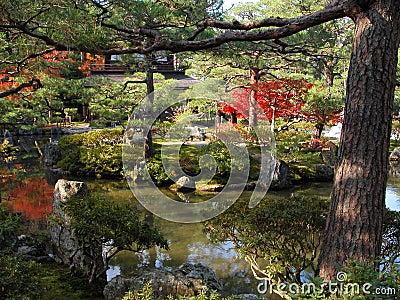 庭院银色寺庙