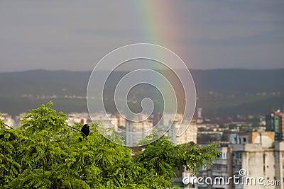 彩虹、在雨以后的惊人的视图和胃