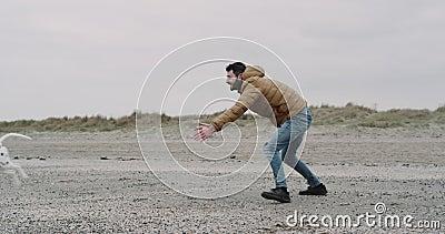 愉快和微笑的人使用滑稽与他的在海滩的达尔马希亚狗 跑与在他的一个球的悦目狗 影视素材