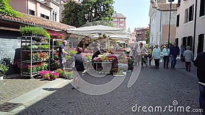 意大利梅斯特威尼斯 — 2019年5月:在意大利市中心用鲜花盛开的柜台 慢动作 股票录像