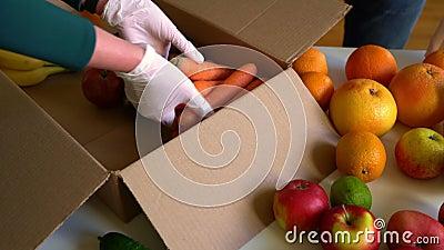 戴着防护性医用手套的志愿者拆开水果和蔬菜 股票录像