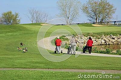 打高尔夫球的妇女