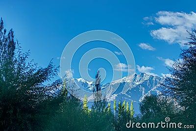 背景绘制天空,树和多雪的蓝色顶在冰峰,美好的leh风景,拉达克,查谟和哪些app多云可以思维导图图片