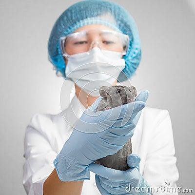招待会是在兽医