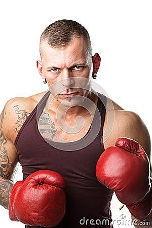 免版税库存照片: 拳击手
