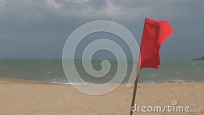 振翼在风的空的红旗 海强的波浪 热带 聚会所 股票视频