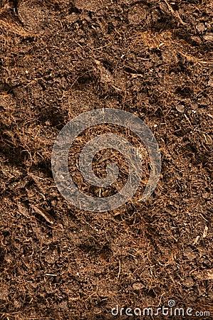 接近的土壤