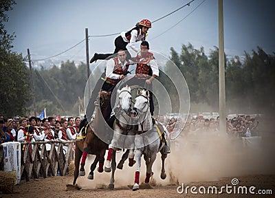 撒丁岛。 在马背上危险等级 图库摄影片