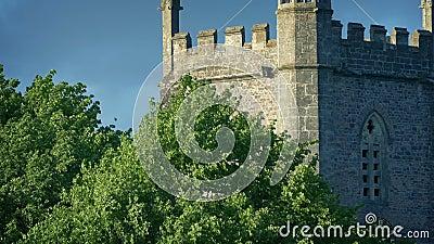 教堂塔和太阳中的树木 影视素材