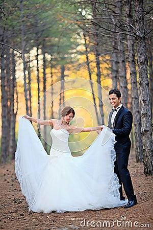 新娘和新郎
