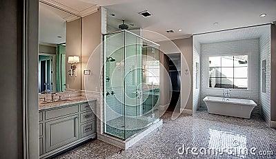 新的现代家庭主浴室室
