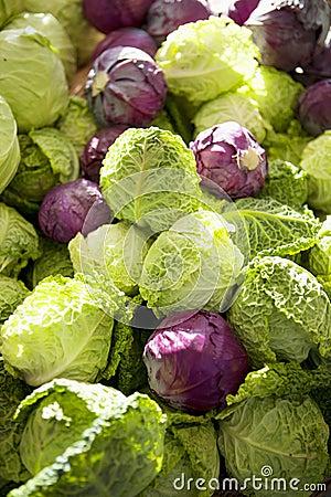 新鲜的有机皱叶甘蓝和紫色圆白菜图片