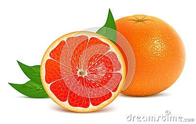 新鲜的葡萄柚